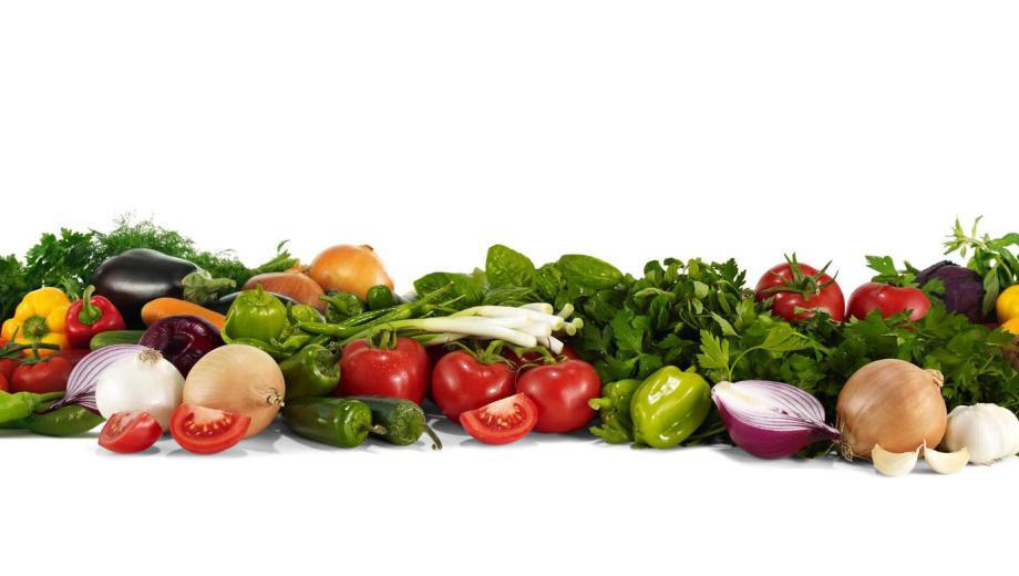 Global food solutions vegetales congelados - Encurtido de zanahoria ...